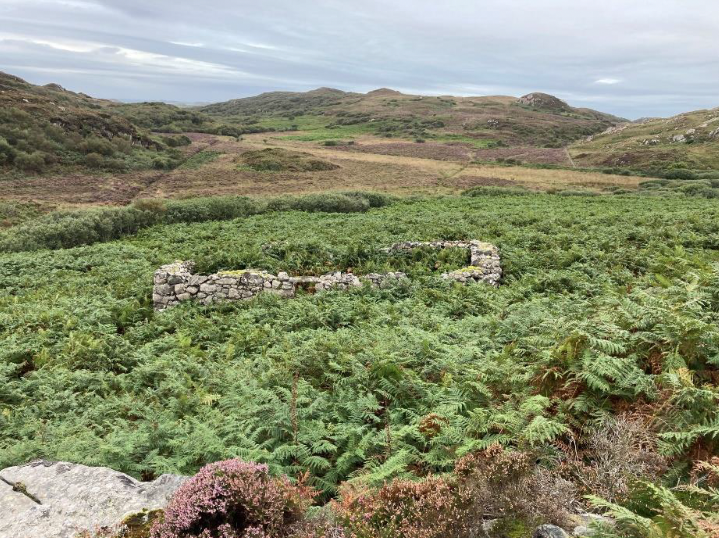Remains from the highland clearances